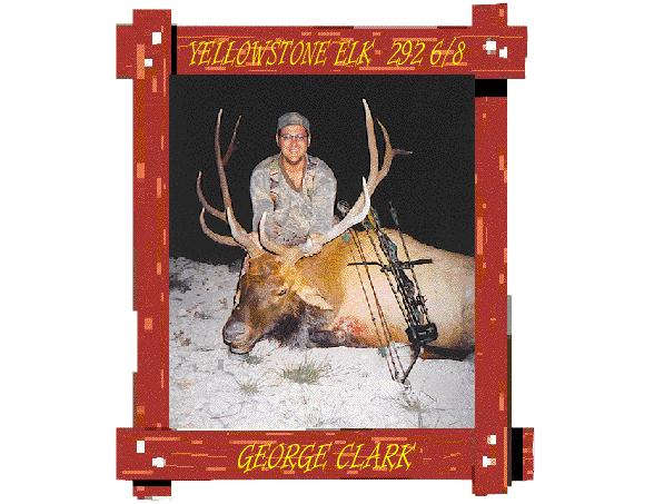 yellowstone-elk